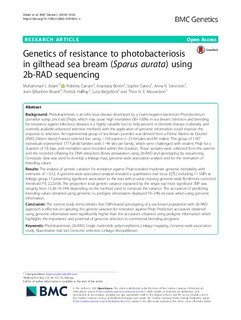 Genetics of resistance to photobacteriosis in gilthead sea