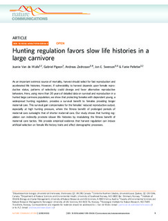 Hunting regulation favors slow life histories in a large carnivore
