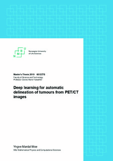 Deep learning for automatic delineation of tumours from PET